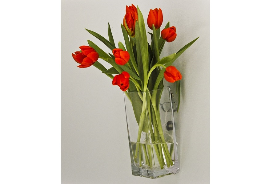vase display wall hanging system